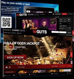 guts screens