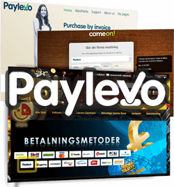 paylevo screens